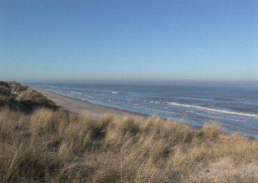 flash player fuer nordsee immobilien film